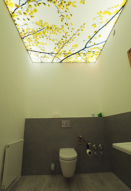 CILING Spanndecke Toilette